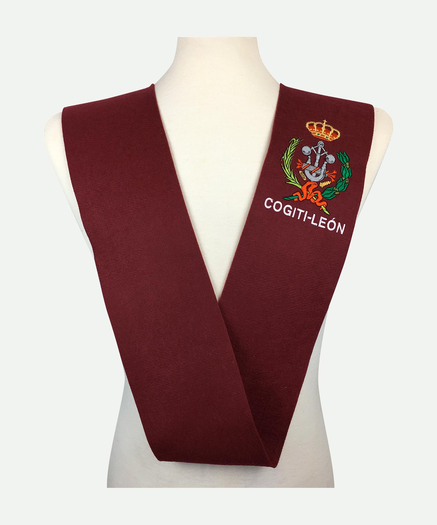 Beca COGITI León